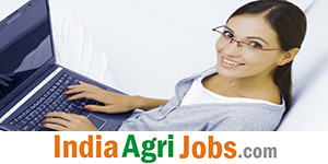 online job portal website development in pune}